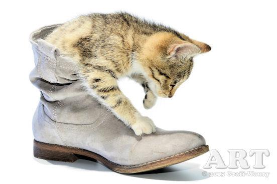 ... Katze im Stiefel...